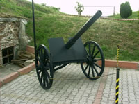 Sukru Pascha Memorial and Balkan War Museum Photo Gallery 3 (Cannon's) (Edirne)