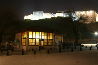 Castle of Gaziantep and Historical Cafe Photo (At Night) (Gaziantep)