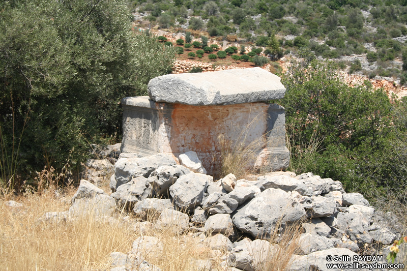 Kanytella (Kanlidivane, Canytellis) Road Photo Gallery 2 (Tomb) (Mersin, Silifke)