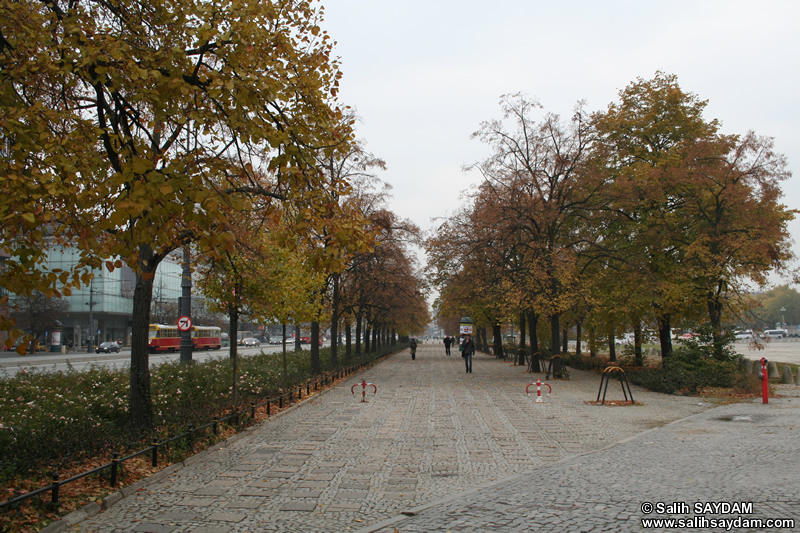 Park Photo Gallery (Warsaw, Poland)
