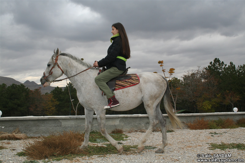 Dolunay Saydam Photo Gallery 3 (Horse Riding)