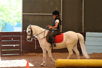 Sevenay Saydam Photo Gallery 8 (Horse Riding)
