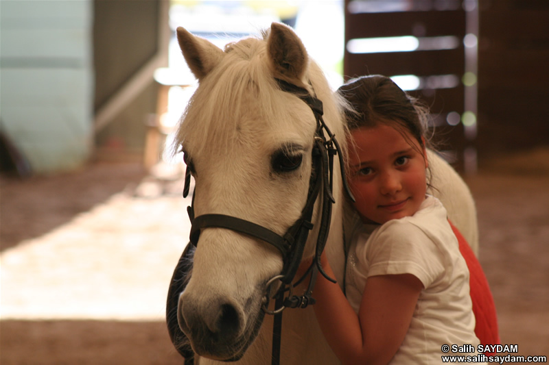 Sevenay Saydam Photo Gallery 10 (Horse Love)